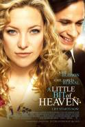 Gabalėlis dangaus / A Little Bit of Heaven (2011)